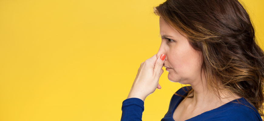 How to Remove Office Odors Like a Pro